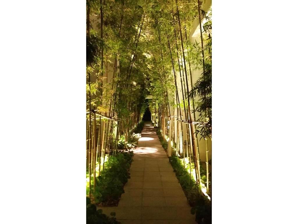 LE NOUVEL ARDMORE garden light